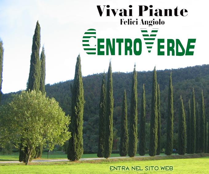 Vivai piante felici cortona arezzo for Vivai piante