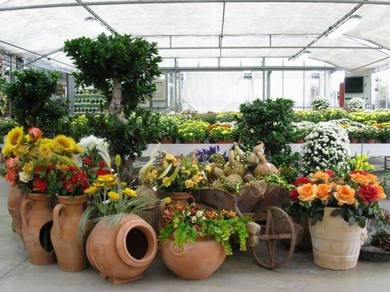 Decorazione Vasi Da Giardino : Ciotole di fiori per esterno. stunning fiori secchi with ciotole di